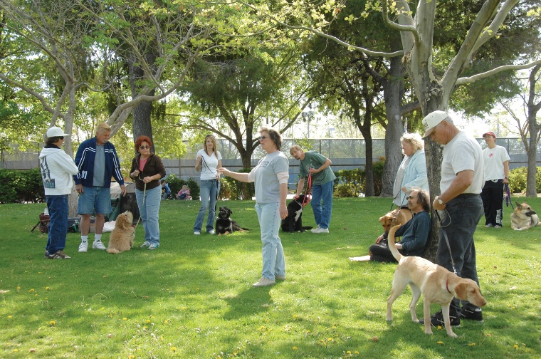 This Neighborhood Park Features Expansive Grassy Fields A Fenced Section For Dogs And Paved Lighted Walking Trail Relaxing Strolls Or Jogging