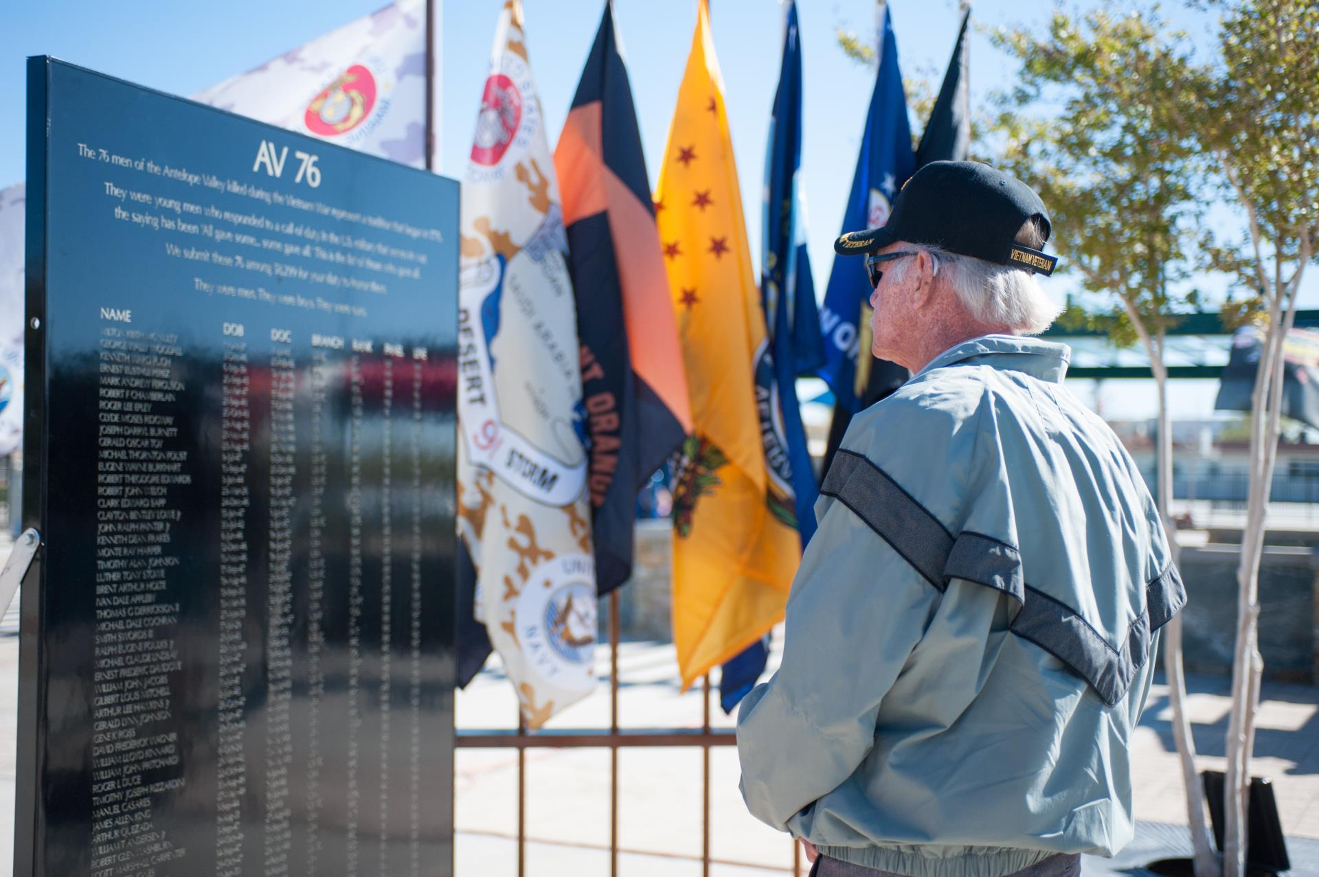 Vietnam Veterans_AV 76 Panel